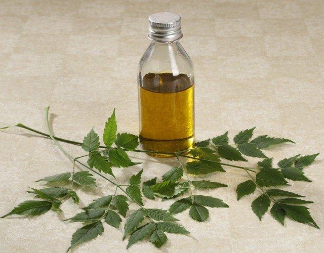 cliomakeup-olio-di-neem-2