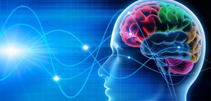 cliomakeup-dieta-chetogenica-cervello-4