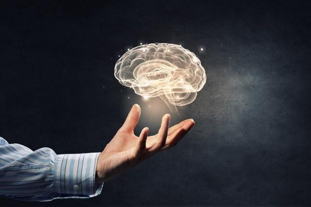 cliomakeup-lowcarb-cervello-12