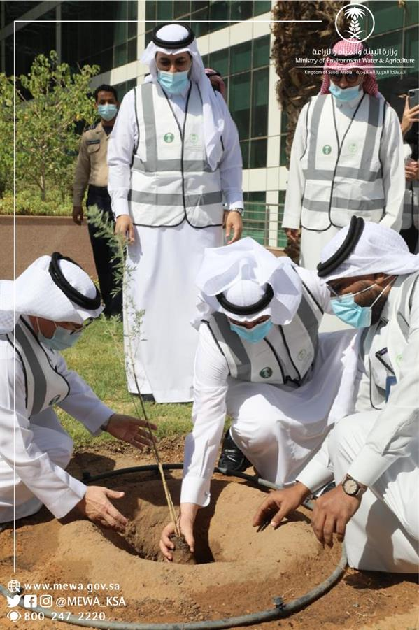 """Minister of Agriculture launches a campaign"""" Let's make it green"""""""