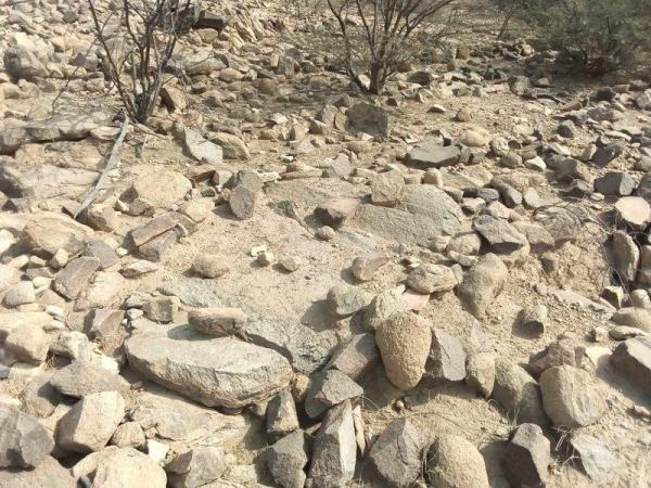 Watch.. Lahoud exposed and destroyed graves as a result of torrential rains and tampering with stray animals in the courtyard