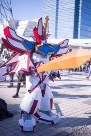 Comiket-89-Anime-Manga-Cosplay-Day-1-17