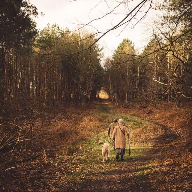 Wonderfull walk through Tunstall woods