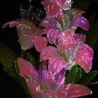 RGB Colour Changing Flower Vase Mood Light Display LED ...