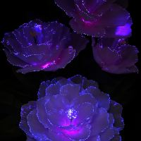 RGB Colour Changing LED Fibre Optic Flower Vase Display ...