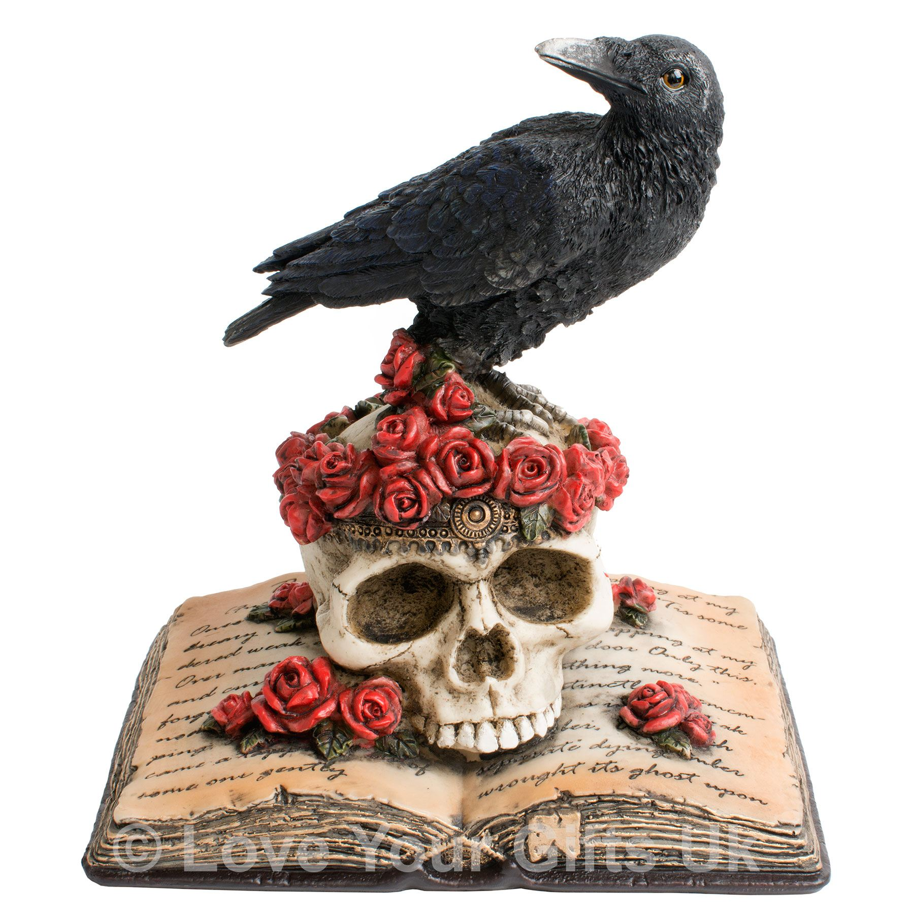 Heartaches Reflection 17cm High Raven Skull Edgar Allan
