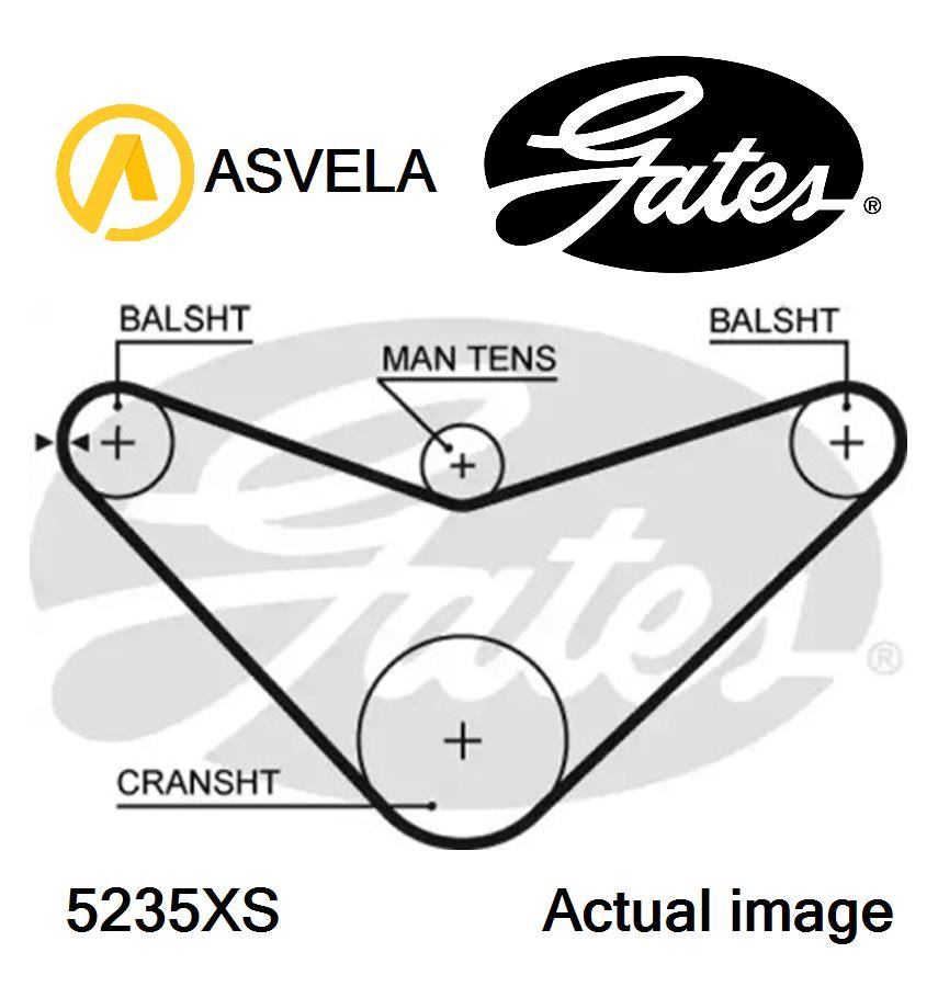 Timing Belt for ROVER,HONDA 600,RH,F 20 Z2,F 20 Z1,H 23 A3