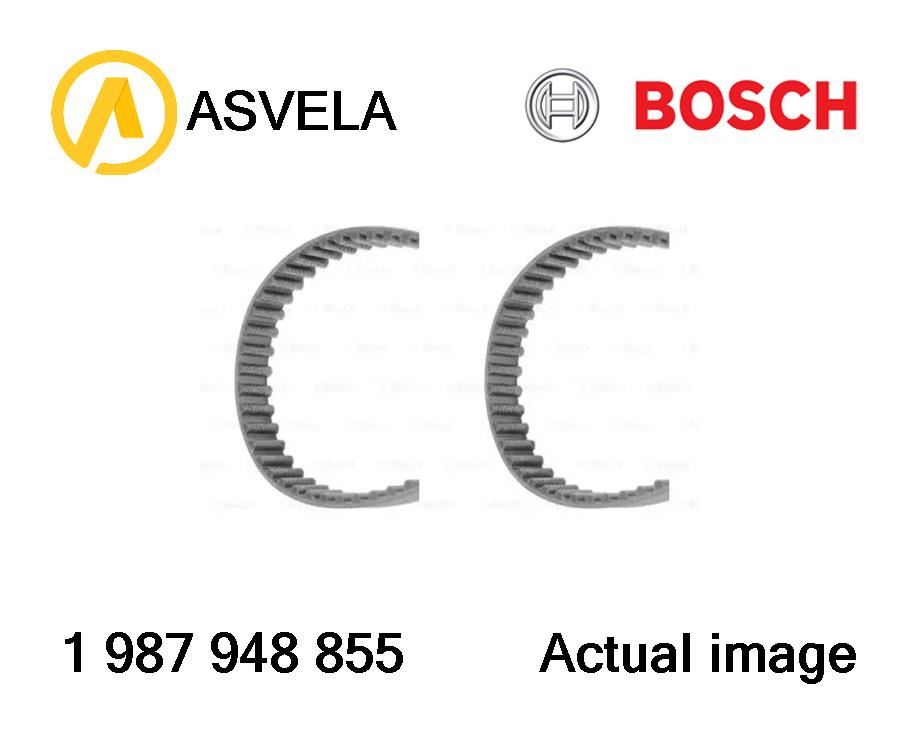 Timing Belt Set for FORD,MAZDA,FORD ASIA/OZEANIA ESCORT IV