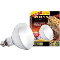 Exo Terra Solar Glo Reptile Heat Lamp UVA UVB Light ALL in ...