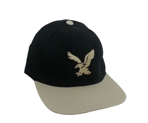 20+ American Eagle Fitted Hats Pictures and Ideas on Meta Networks 61ba420b193c
