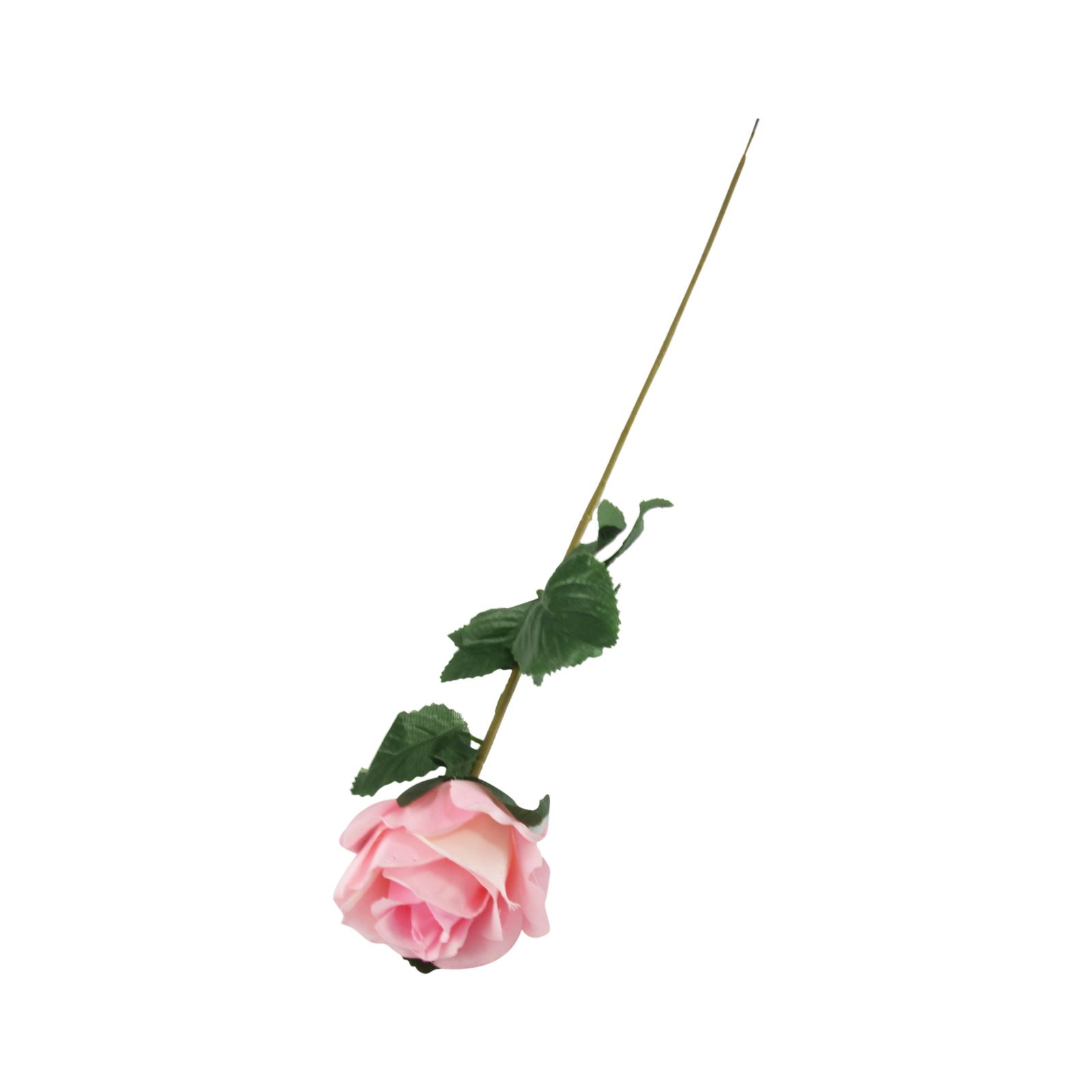 Single Peach Rose Stem