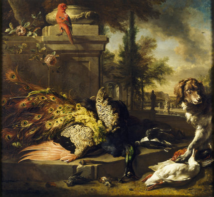Domestic Animals Wallpaper Peacock And Spaniel Dutch Still Life Painting Showing A