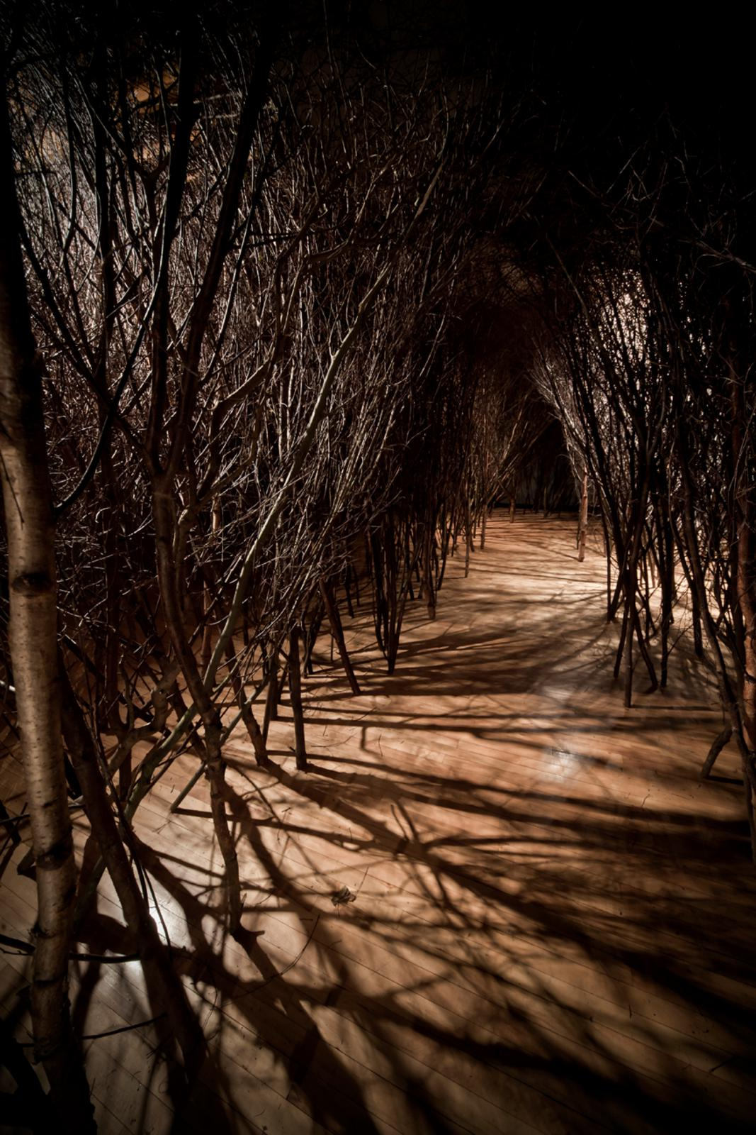 The forked forest path  Artwork  Studio Olafur Eliasson