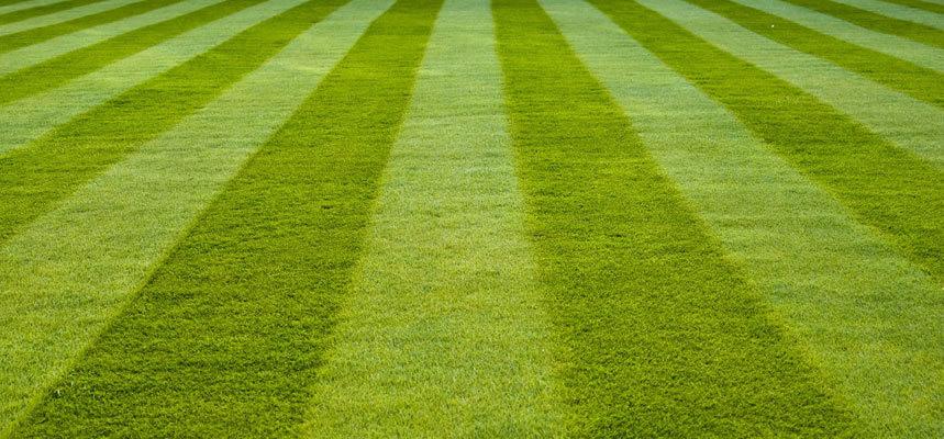 Lawn Striping Patterns