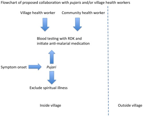small resolution of flowchart demonstrating proposed collaboration with pujaris for prompt malaria diagnosis beginning at the onset of symptoms in tribal village
