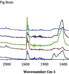 comparison between ftir spectra of sungir human bone samples with ftir spectra of mary rose pig bone an orau in house standard  [ 1603 x 841 Pixel ]