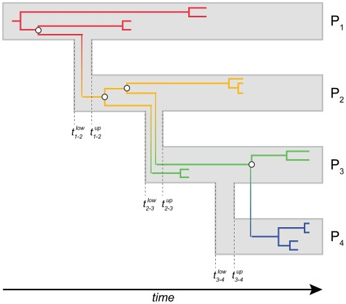 small resolution of chain of transmission diagram