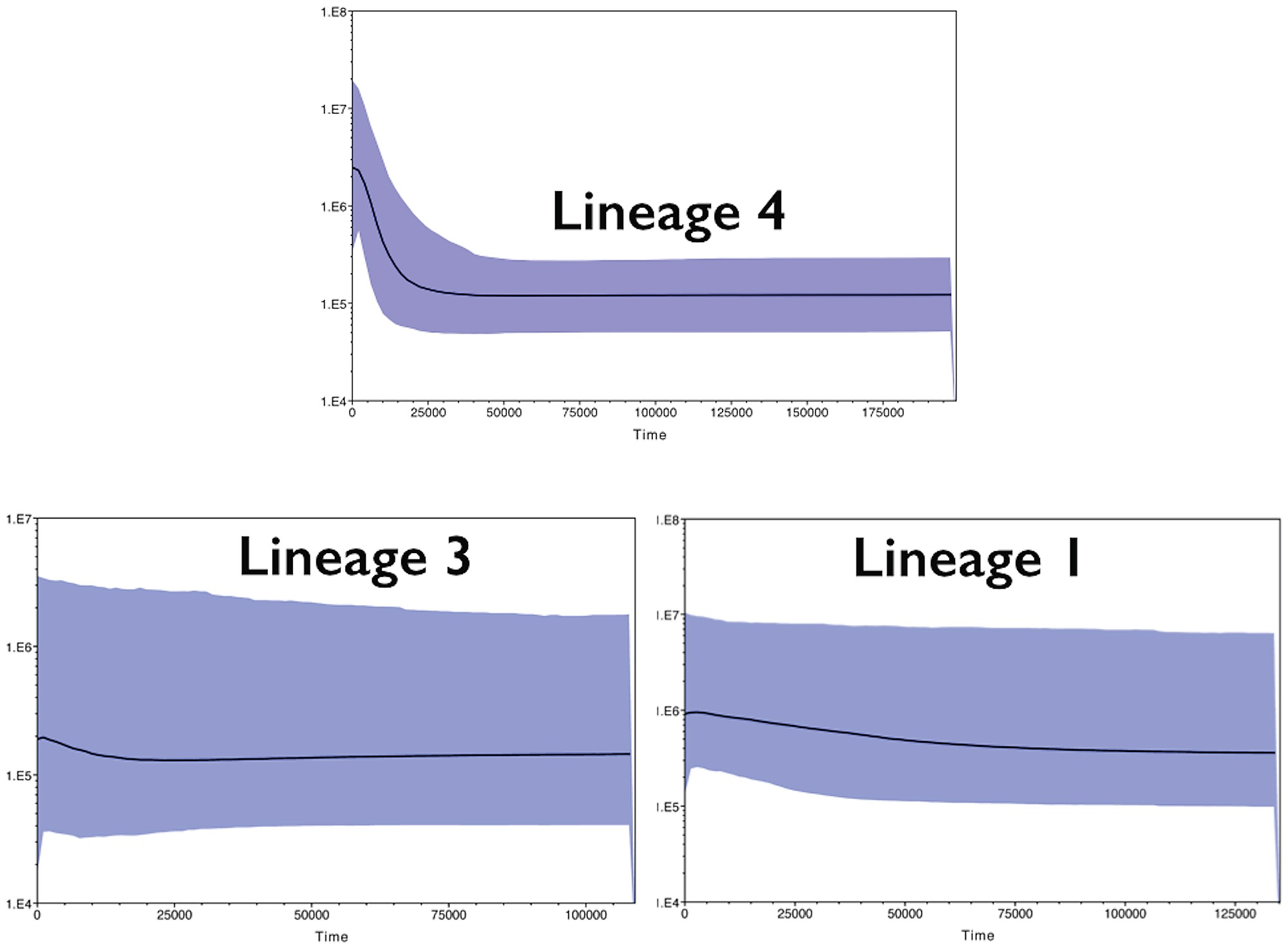 hight resolution of bayesian skyline plot of three mitochondrial lineages of the four eyed fish