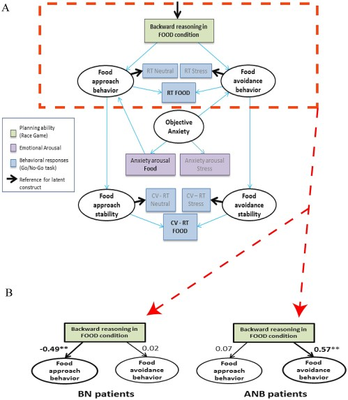 small resolution of model used to investigate the association between backward reasoning in the race game in the food condition and approach or avoidance behaviors