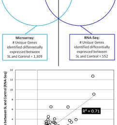 venn diagram of intersections of rna seq and microarray data after correcting for noise threshold and statistical analyses see s2 fig steps 11 and 12  [ 1087 x 2000 Pixel ]