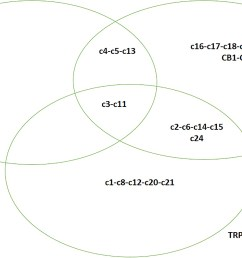diagram amino acid [ 1750 x 1052 Pixel ]