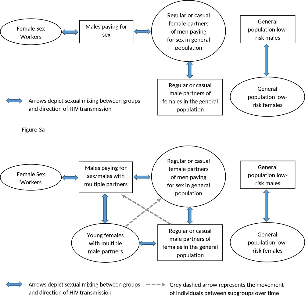 medium resolution of fig 3 a conceptual pathway of heterosexual hiv transmission from female sex workers to the general population in west africa and fig 3 b revised