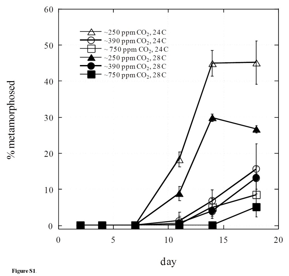 medium resolution of figshare