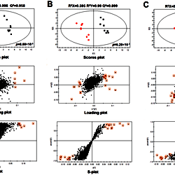 PLS-DA scores plot (top panel), loading plot (middle panel