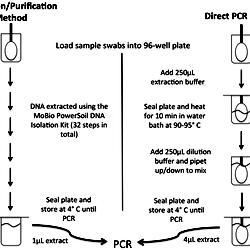 Data Extraction Diagram Data Conversion Diagram Wiring