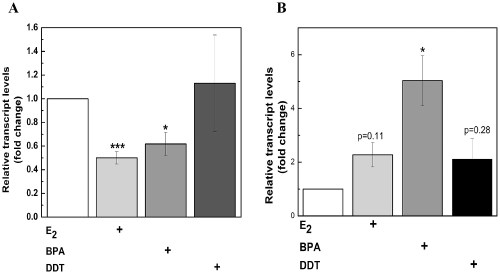 small resolution of effects of e2 bpa and ddt on mir 21 gene expression in mcf 7 andeffects