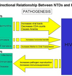 schematic diagram highlighting the bi directionality of the pathogenic links between ntds and hiv aids  [ 1369 x 991 Pixel ]