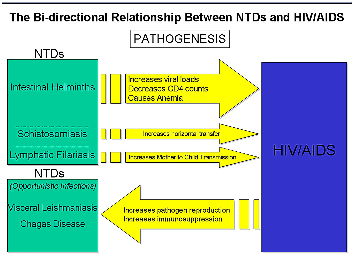 hight resolution of schematic diagram highlighting the bi directionality of the pathogenic links between ntds and hiv aids