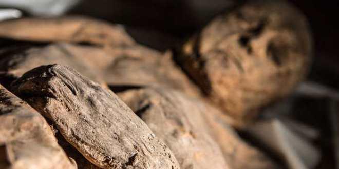 Découverte des plus anciennes traces de la variole dans une momie enfant