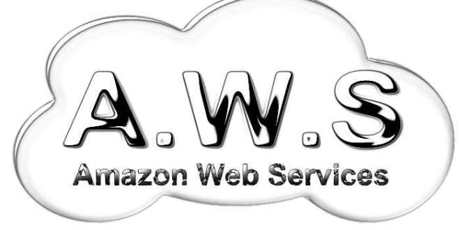 Amazon Web Services, étonnant poids lourd du cloud computing, face à Microsoft, IBM et Google