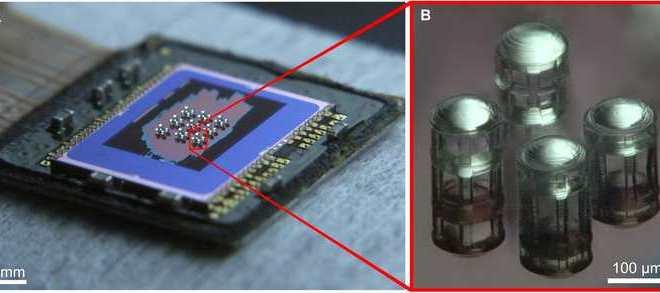 Un appareil photo imprimé en 3D qui peut rivaliser avec l'oeil d'un aigle