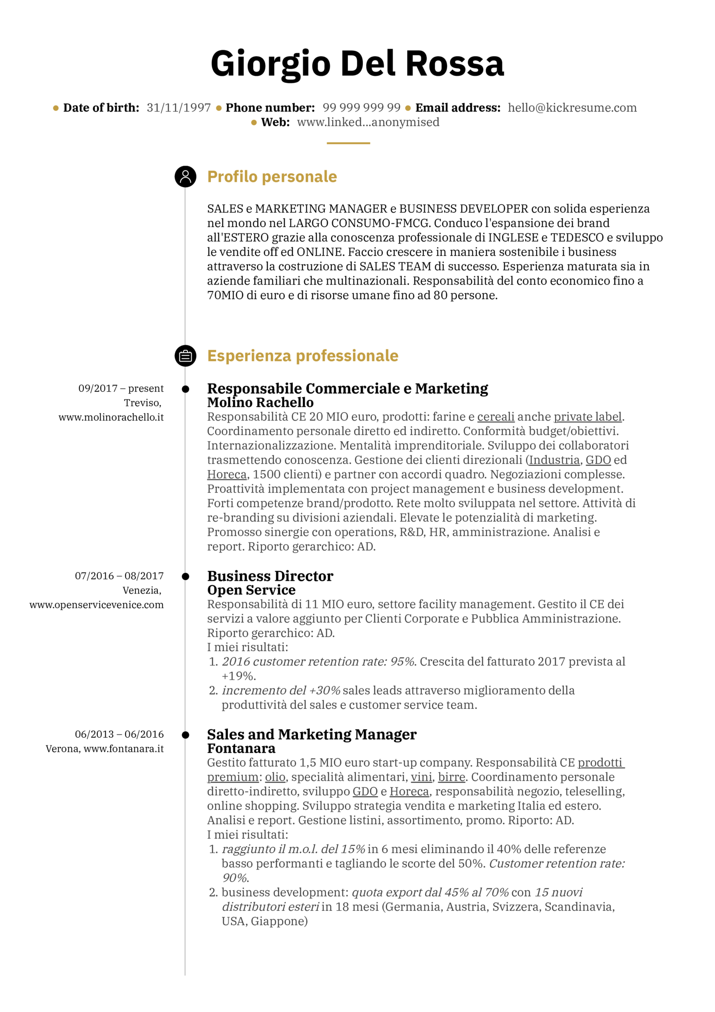 Resume Examples by Real People Sales and marketing