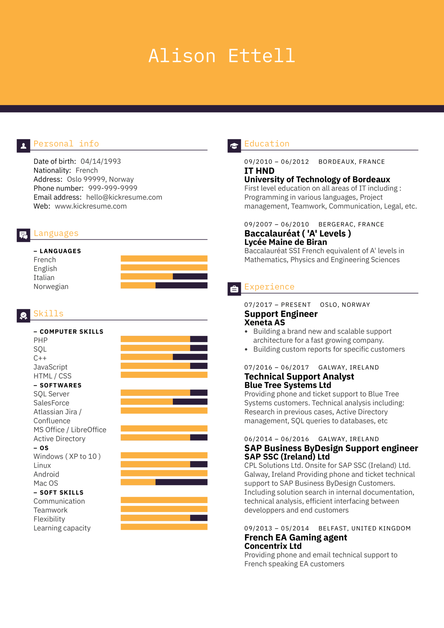 Technical Resume Tips Resume Examples By Real People Technical Support Engineer Resume