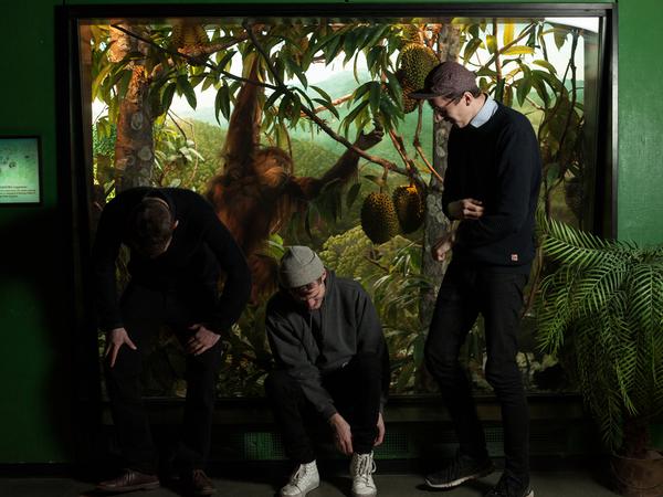 Berlin Zoo feat. Sofa T