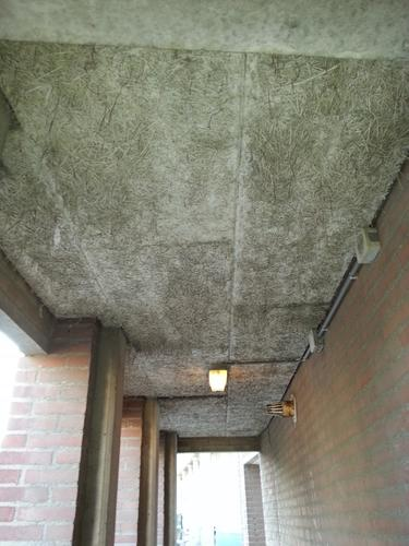 vervangen buitenplafonds van HWC platen  Werkspot