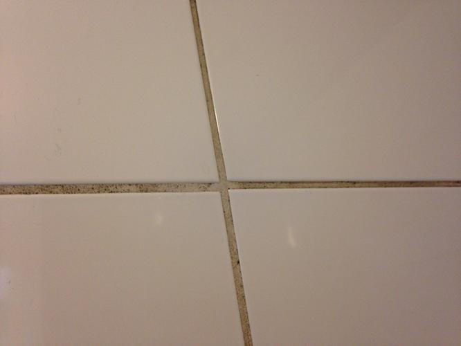 Schimmel verwijderen in Badkamer  plafond herstellen