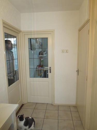 Hal begane grond deuren deurposten en plinten schilderen