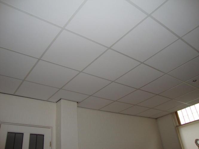 Systeemplafond vervangen voor Gipsplafond  Werkspot