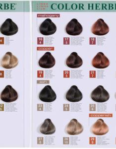Elgon hair color ideas for dark fabulous also alter ego colors chart frodo fullring rh
