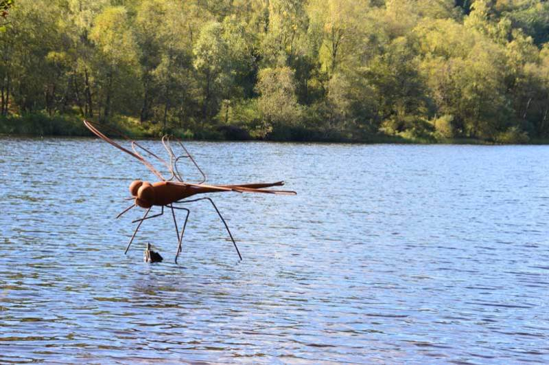 Damsel Fly Sculpture Lochan Spling Ard Forest