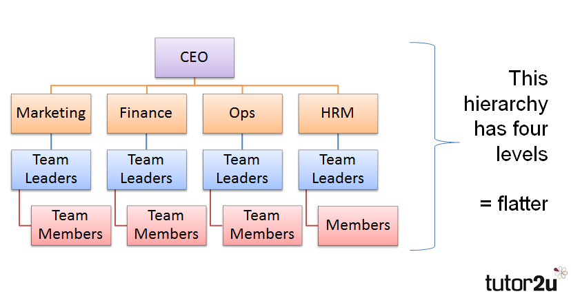 Further below is another organisation chart which shows  taller hierarchy also tutor  business rh