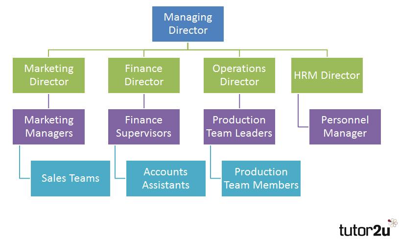 Organisation charts also tutor  business rh