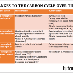 The Carbon Cycle Diagram Gcse Rover 75 Wiring And Body Electrical System Changes To Over Time Tutor2u Geography Subscribe Email Updates From