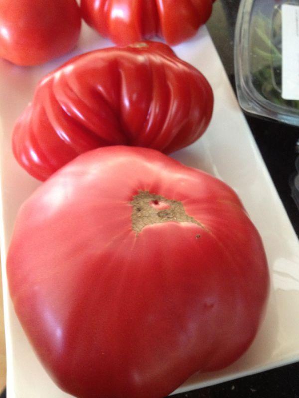 Los Tomates  pg 2