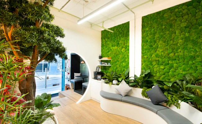How To Future Proof Your Office With Sustainability Oktra