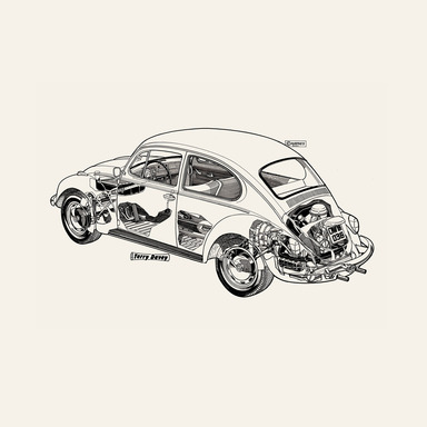 Birch Ply Prints of White Beetle by Haynes Manuals (800mm